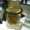 Al Museo della Scienza Ampio spazio è dedicato alla medicina con le principali specialità cliniche e di laboratorio