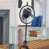 Toyin Ojih Odutola The Privilege of Placement (2017) © Toyin Ojih Odutola. Courtesy of the artist and Jack Shainman Gallery, New York