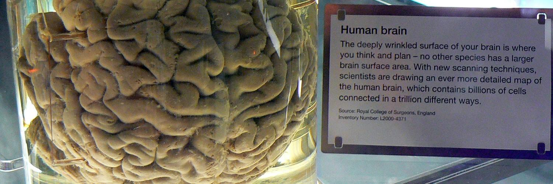 Science Museum Londra